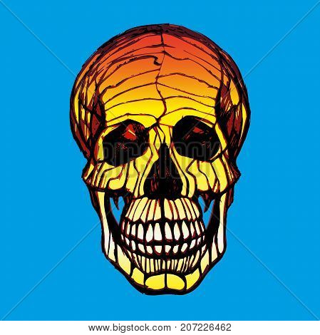 Vector illustration of human skull with a lower jaw in ink hand drawn style.
