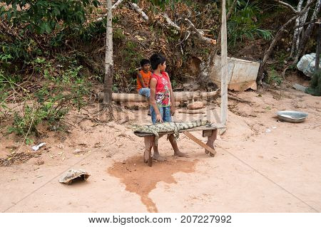 Boca de valeria Brazil - December 03 2015: boys selling crocodile bound to wooden bench on natural background. Poverty lifestyle and childhood concept