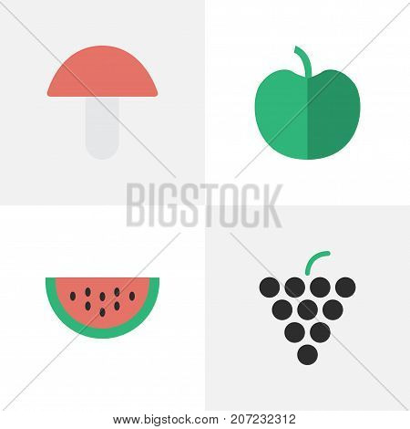 Elements Fruit, Wine, Melon And Other Synonyms Wine, Boletus And Tree.  Vector Illustration Set Of Simple Horticulture Icons.
