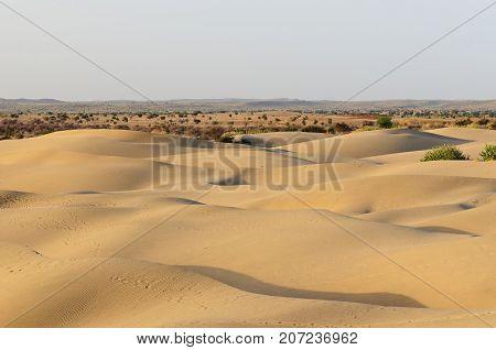 Thar desert in India Sand dunes Rajasthan