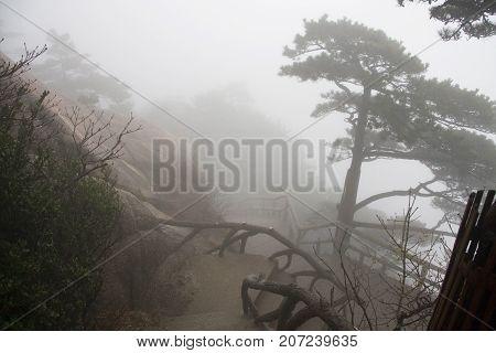 The Mist, Foggy Rainny Day. Stone Steep Steps . Trekking Walking Hiking Huangshan Mountain. Anhui, C
