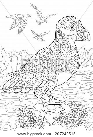 Coloring page of puffin a hole-nesting auk (seabird) of northern and Arctic waters. Freehand sketch drawing for adult antistress coloring book in zentangle style.