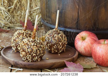 Caramel apples coated with nuts on a wooden plate with fresh apples