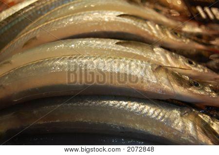 007 Fish Stack
