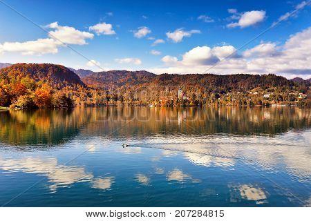 Colorful Autumn On Bled Lake, Slovenia