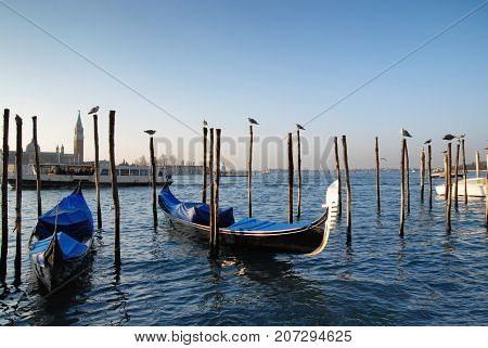 the famous gondolas of Venice in italy