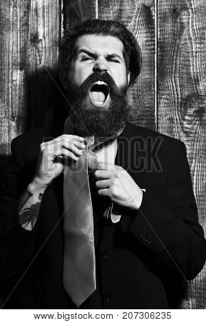 Brutal Caucasian Hipster Have Acid Orange Tie On Suit