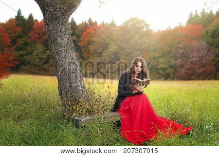Beautiful young woman in an elegant red dress and jacket sitting on a wooden bench under an old tree reading an antique book in a colorful autumn decor.