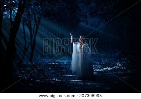 Young elven girl at forest poster