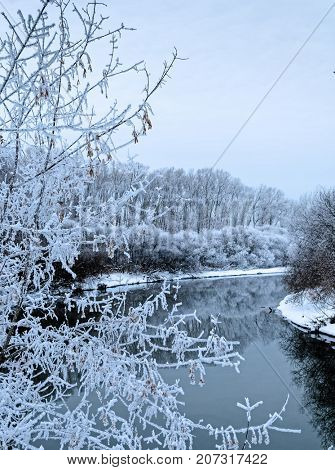 Winter landscape. Icy trees around river