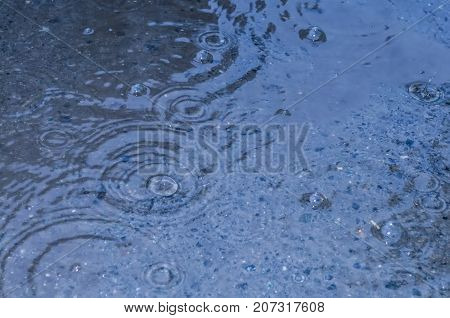 rain drops on the surface of water in a puddle