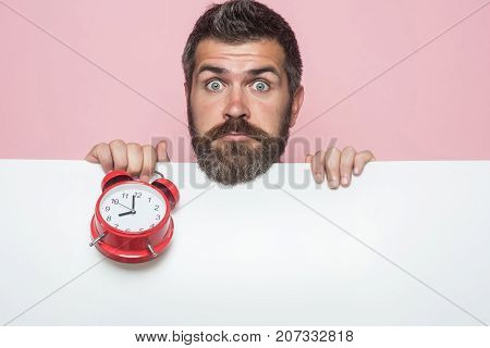 Hipster with red clock on pink background. Guy with surprised face hold white paper. End of working day or perfect morning. Man with long beard hold alarm clock. Time management and business success.