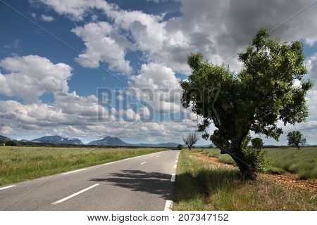 Highway in southern France on the Plateau de Valensole in Moustiers-Sainte-Marie in Provence