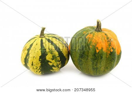 two decorative pumpkins on a white background