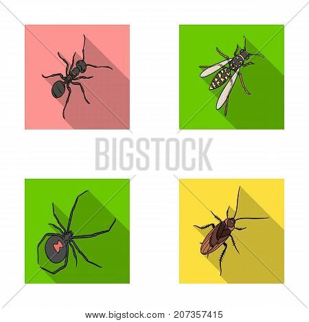An insect arthropod, an osa, a spider, a cockroach. Insects set collection icons in flat style vector symbol stock isometric illustration .