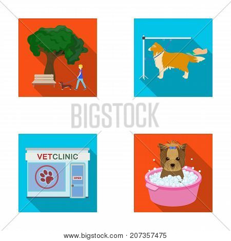 Walking with a dog in the park, combing a dog, a veterinarian's office, bathing a pet. Vet clinic and pet care set collection icons in flat style vector symbol stock illustration .