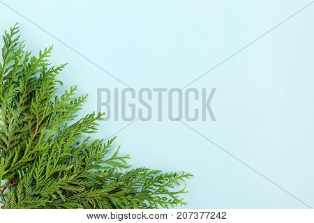 Christmas Flat Lay Composition Of Fir Branches At The Left Bottom Corner With Copy Space On The Blue