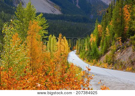 Scenic autumn drive in Yoho National park in British Columbia