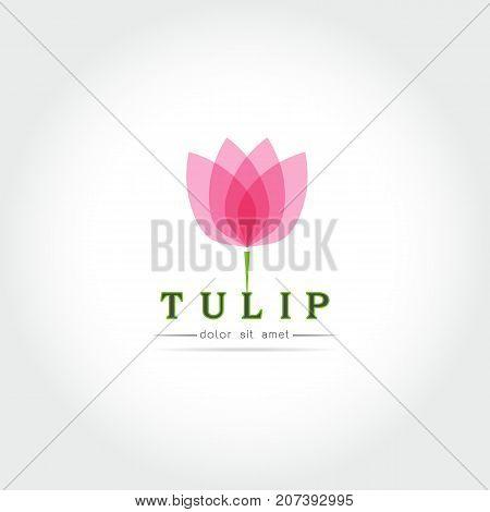 Simple Tulip bud with leaves design for logo emblem or sign on white background Vector illustration