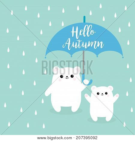 Hello autumn. Two polar white small little bear cub holding umbrella. Rain drops. Cute cartoon baby character. Arctic animal collection. Love card Blue background. Isolated. Vector illustration.