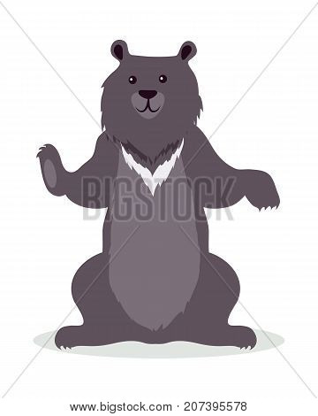 Asian black bear cartoon character. Cute black bear flat vector isolated on white. Asian fauna species. Bear icon. Wild animal illustration for zoo ad, nature concept, children book illustrating