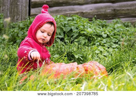 a small serious child in a purple gnome suit sits on a floor of a turn with pumpkin in the grass and looks down. There is a copy space for the inscription halloween. Farm wooden wall.
