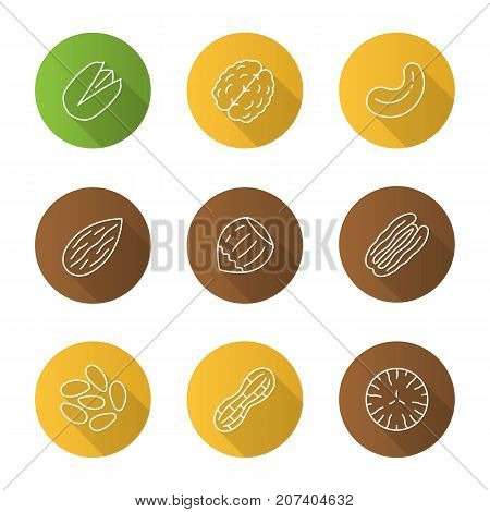Nuts types flat linear long shadow icons set. Pistachio, walnut, cashew and pecan nuts, almond, hazelnut, pinenuts, peanut, nutmeg. Vector outline illustration poster