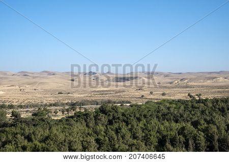 Yeruham Park in the Negev Desert (Israel)