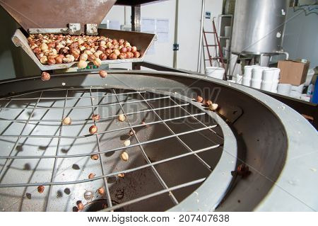The Processing Of Hazelnuts