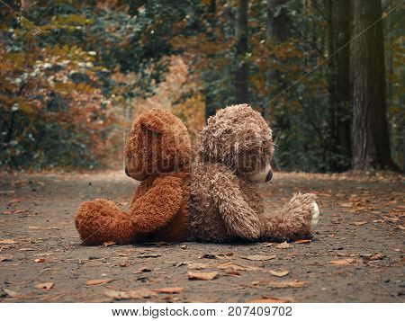 Teddy bears sit with their backs to each other. Autumn forest path. The concept of resentment misunderstandings and conflict in relationships