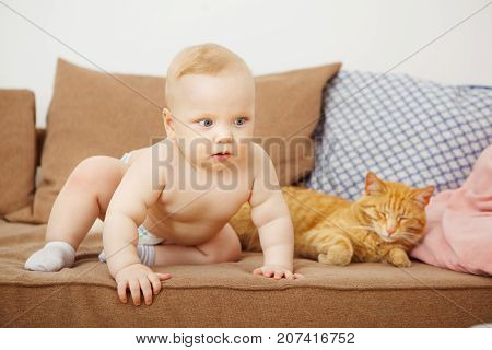 Baby and cat sits on sofa, infant has allergy on feline, adorable child and red cat spend time together, favourite pet since childhood