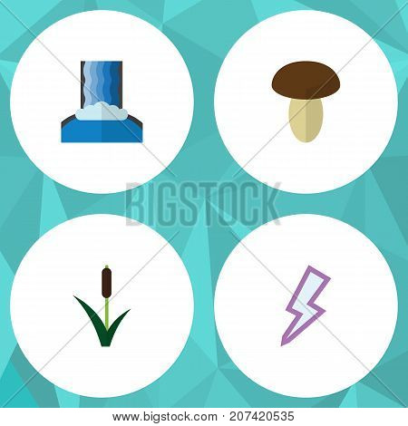 Flat Icon Bio Set Of Cascade, Lightning, Cattail And Other Vector Objects