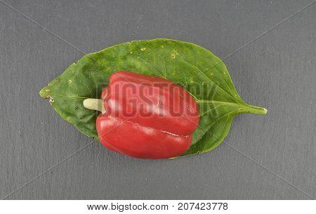 Ball Pepper On Slate
