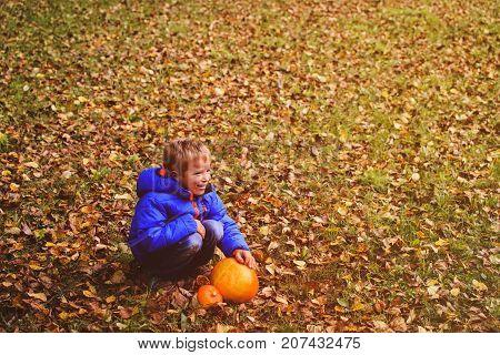 little boy holding pumpin in autumn nature, halloween celebration