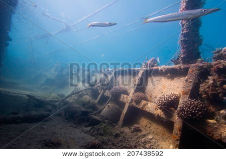 Coral Encrusted Shipwreck Deck, Underwater Photo, Blue Backgrond