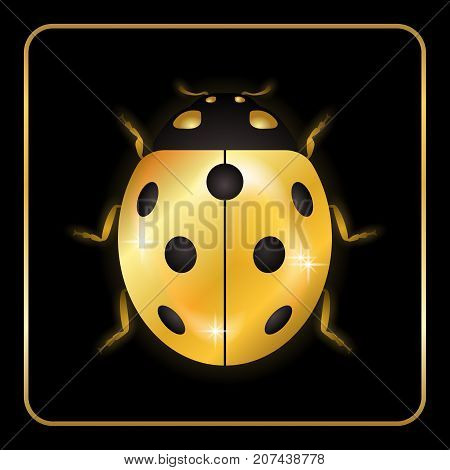Ladybug gold insect small icon. Golden lady bug animal sign isolated on black background. 3d volume design. Cute jewelry ladybird design. Cartoon lady bird closeup beetle. Vector illustration