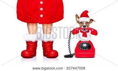 Christmas Santa Claus Dog On The Phone
