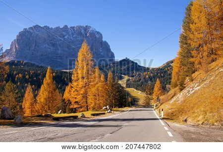 Scenic roadway in Dolomite Alps with beautiful yellow larch trees and Sassolungo - Langkofel - mountain on background. Colorful autumn day in Dolomites Selva di Val Gardena location Italy