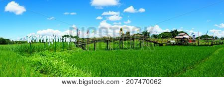 beautiful Rural bamboo bridge across the rice paddy fields with blue sky and fluffy cloud in sunny day at countryside. lampang northern part of thailand. Bridge name