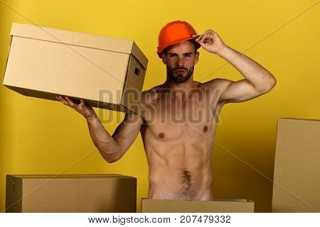 Sexuality And Building Concept: Guy With Sexy Torso Holding Carton
