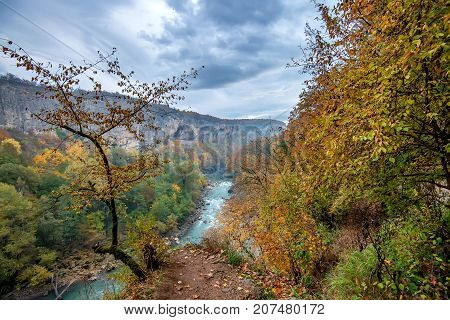 Fantasy landscape of the mysterious foggy autumn mountain forest and river