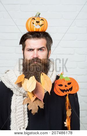 Halloween Man With Pumpkins On Head And Shoulder
