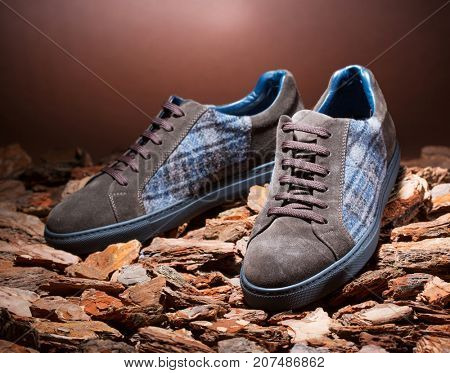 Shoes for autumn on wood bark background