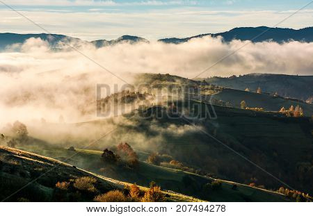 Thick Fog Over The Rolling Hill In Autumn