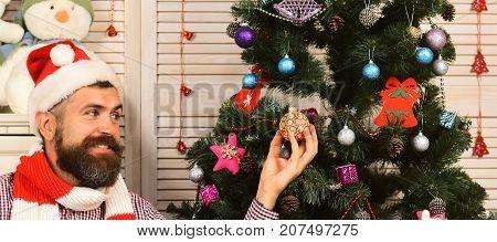 Guy Decorates Christmas Tree. Festivals And Decor Concept.