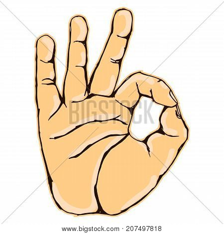 Vector colorful illustration of a human hand body part OKAY hand gesture isolated on white background. Can be used for web poster info graphic.