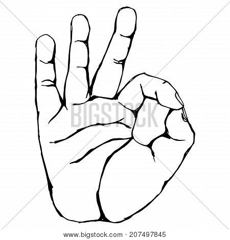 Vector black outline illustration of a human hand body part OKAY hand gesture isolated on white background. Can be used for web poster info graphic.