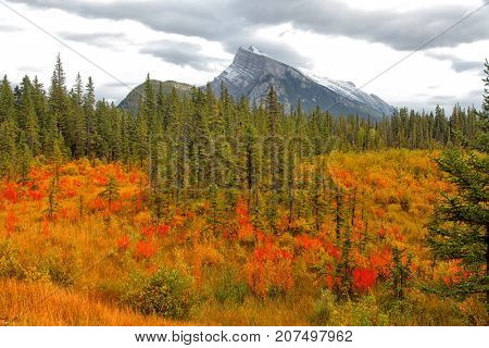 Autumn in Vermilion lakes area at Banff national park Canada
