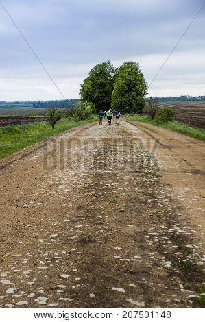 hikers at the rural road through agricultural fields
