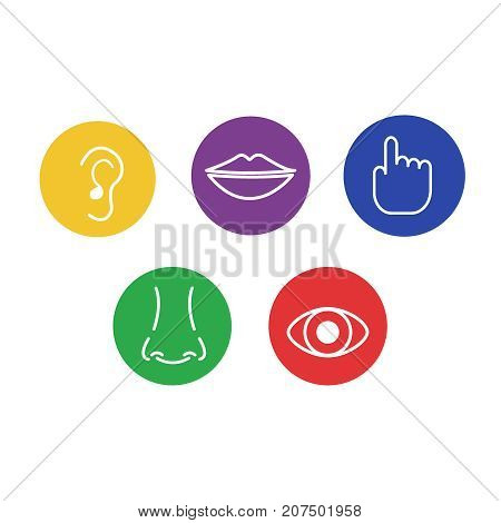Set of icons of the five human senses: sight, smell, hearing, touch, taste. Vector Illustration